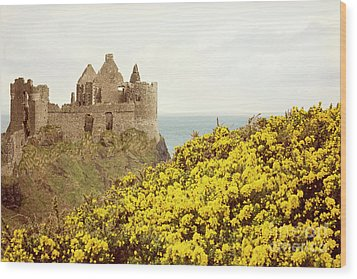 Wood Print featuring the photograph Castle Ruins And Yellow Wildflowers Along The Irish Coast by Juli Scalzi