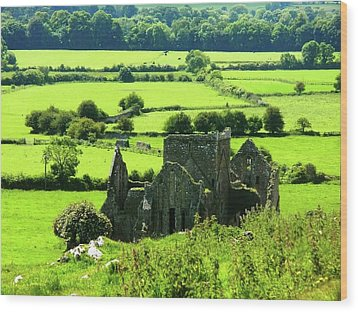 Castle Ruins Countryside Wood Print