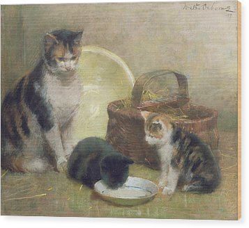 Cat And Kittens Wood Print by Walter Frederick Osborne