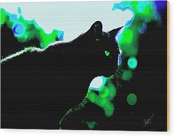 Cat Bathed In Green Light Wood Print by Gina O'Brien