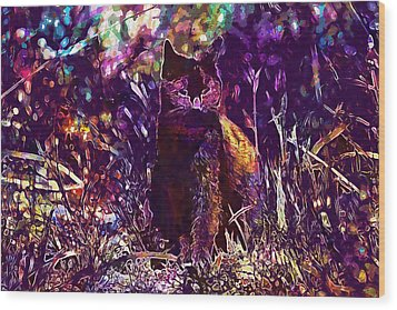 Wood Print featuring the digital art Cat Black Sun Meadow  by PixBreak Art