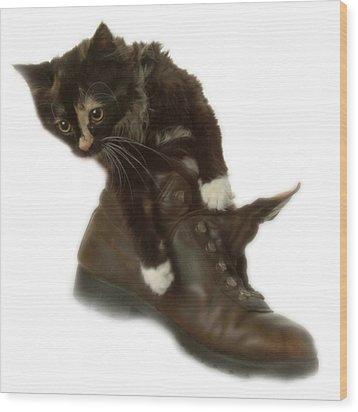 Cat In Boot Wood Print