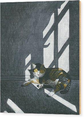 Cat In Empty Room Wood Print by Carol Wilson