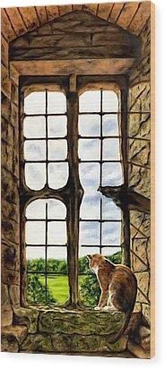 Cat In The Castle Window Wood Print