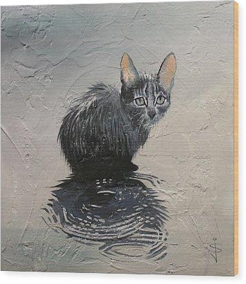 Cat In The Rain Wood Print by Jan Szymczuk