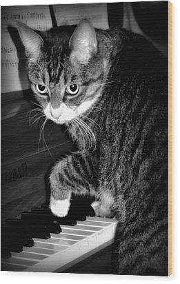 Cat Jammer Wood Print