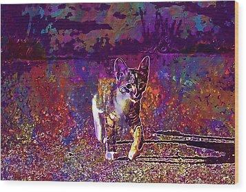 Wood Print featuring the digital art Cat Kitten Cat Baby Mackerel  by PixBreak Art