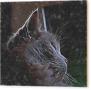 Cat Muse Wood Print by Aliceann Carlton
