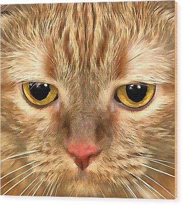Cat Musya Wood Print