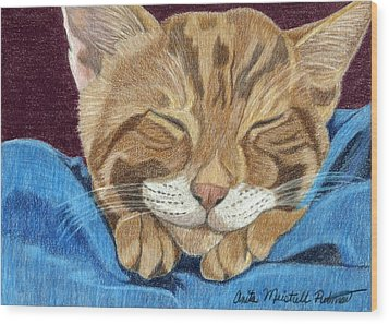 Cat Nap Wood Print by Anita Putman