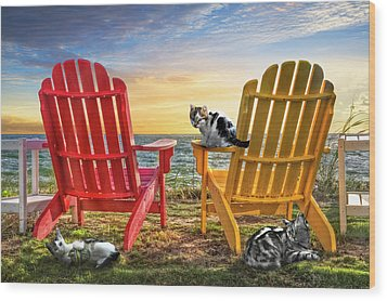 Wood Print featuring the photograph Cat Nap At The Beach by Debra and Dave Vanderlaan