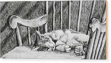 Wood Print featuring the drawing Cat Nap I by Robert Decker