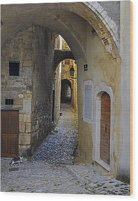 Wood Print featuring the photograph Cat On A Quiet Street In Viviers by Allen Sheffield