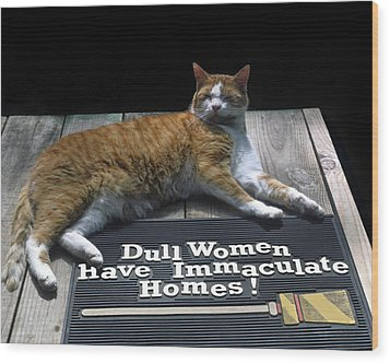 Wood Print featuring the photograph Cat On Dull Women Mat by Sally Weigand