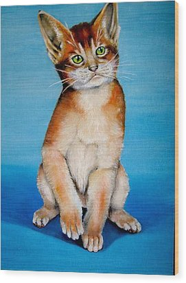 Cat Original Oil Painting Wood Print by Natalja Picugina