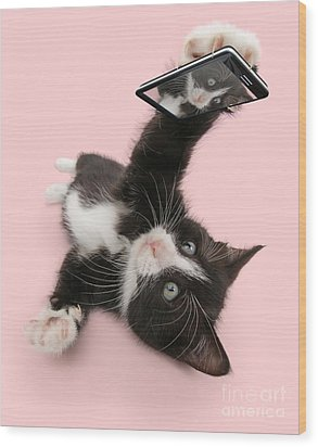 Cat Selfie Wood Print