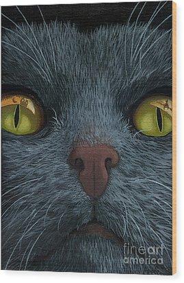 Cat Vision - Black Cat Oil Painting Wood Print by Linda Apple