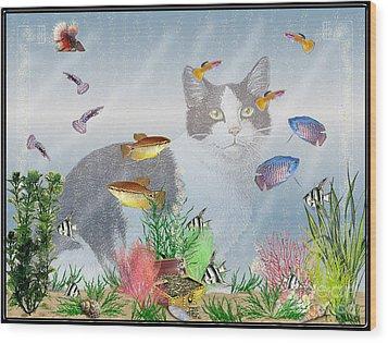 Cat Watching Fishtank Wood Print by Terri Mills
