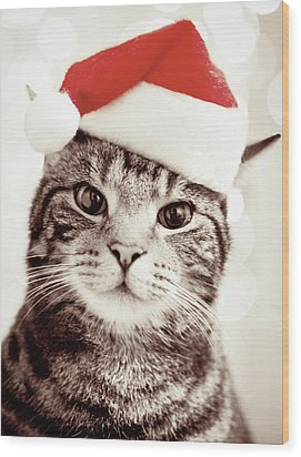 Cat Wearing Christmas Hat Wood Print by Michelle McMahon