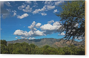 Wood Print featuring the photograph Catalina Mountains H48 by Mark Myhaver