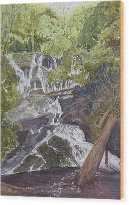 Wood Print featuring the painting Catawba Falls - Working Notes by Joel Deutsch