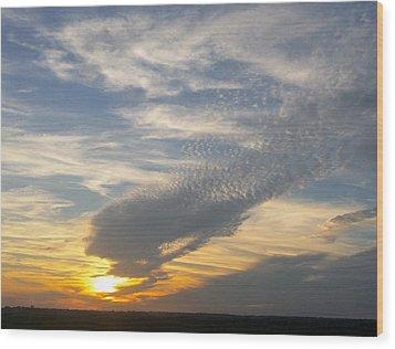 Catch The Morning Sun Wood Print
