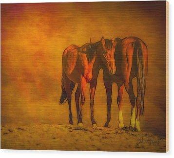 Catching The Last Sun Digital Painting Wood Print