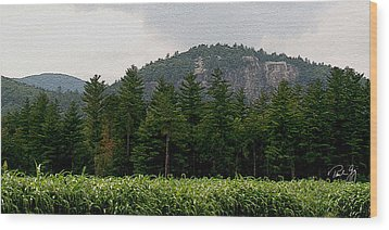 Cathedral Ledge North Conway Nh Wood Print by Paul Gaj