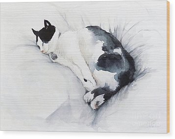 Catnap 1-2 Wood Print
