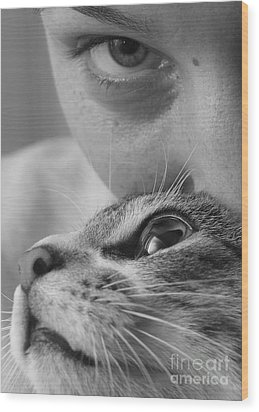 Cat's Eyes Wood Print by Michael Canning
