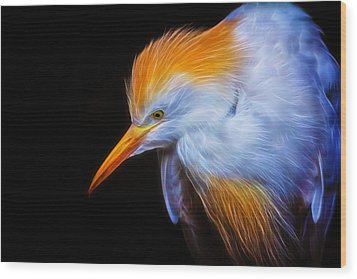 Cattle Egret Electrified Wood Print by David Gn