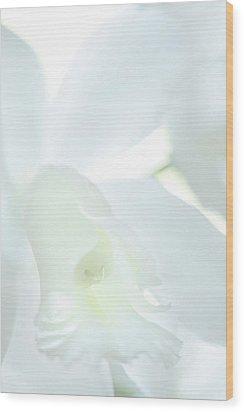 Cattleya Orchid #1 Wood Print