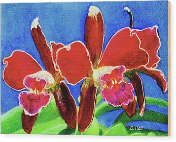 Cattleya Orchids Flowers #215 Wood Print by Donald k Hall