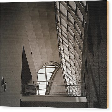 Wood Print featuring the photograph Catwalk by Laura DAddona