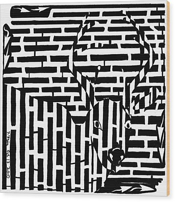 Caught In The Headlights Maze Wood Print by Yonatan Frimer Maze Artist