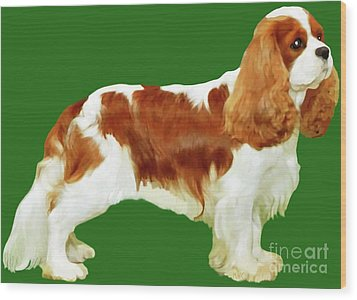 Cavalier King Charles Spaniel Wood Print by Marian Cates