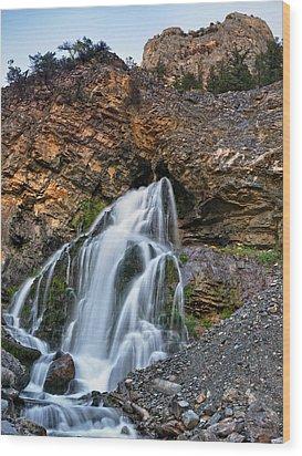 Cedar Creek Falls 2 Wood Print by Leland D Howard
