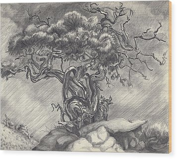 Cedar Dancing On The Eastern Peak Wood Print by Dawn Senior-Trask