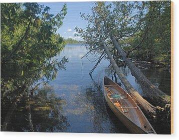 Cedar Strip Canoe And Cedars At Hanson Lake Wood Print