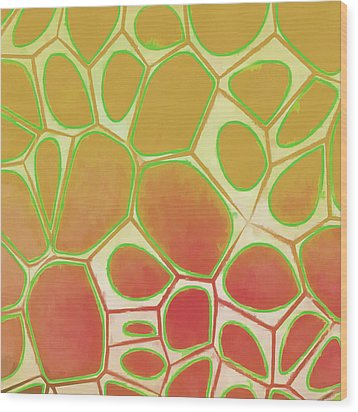 Cells Abstract Five Wood Print by Edward Fielding