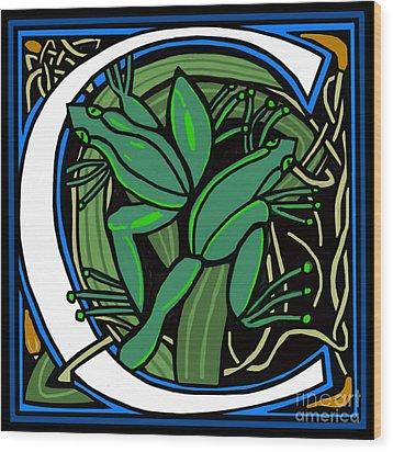 Celt Frog Letter C Wood Print by Donna Huntriss