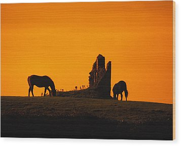 Celtic Horses At Sunset Wood Print by Carl Purcell