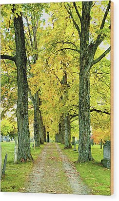 Cemetery Lane Wood Print by Greg Fortier