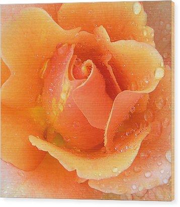 Center Of Orange Rose Wood Print by John Lautermilch