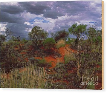 Central Australia I Wood Print by Louise Fahy