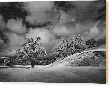 Wood Print featuring the photograph Central California Ranch by Sean Foster