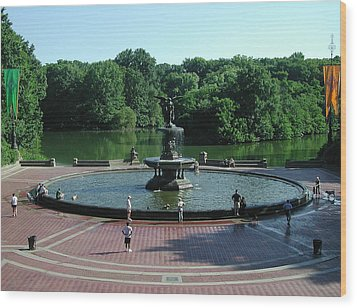 Central Fountain Wood Print