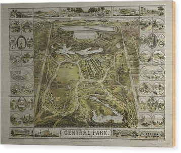 Wood Print featuring the photograph Central Park 1863 by Duncan Pearson