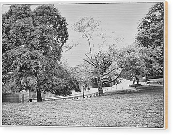 Wood Print featuring the photograph Central Park In Black And White by Madeline Ellis