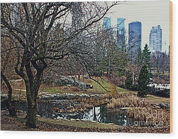 Central Park In January Wood Print